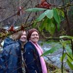 Laura and Tessa at Sweet Creek, Oregon