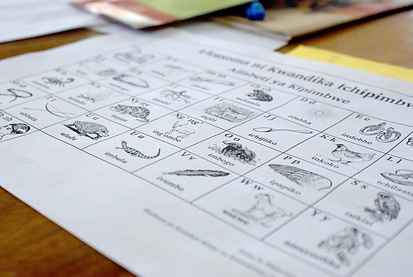 The provisional Pimbwe alphabet chart