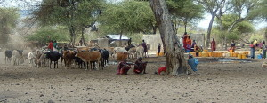 Maasai herdsmen at a water pump