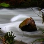 Sweet Creek, Oregon